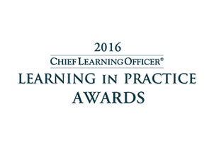 2016 CLO Awards - CD2 Client:WellCare takes Silver
